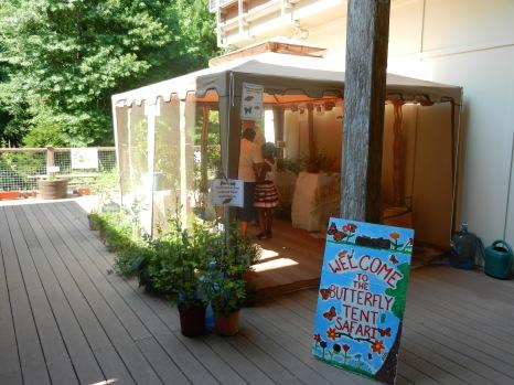 butterfly safari tent