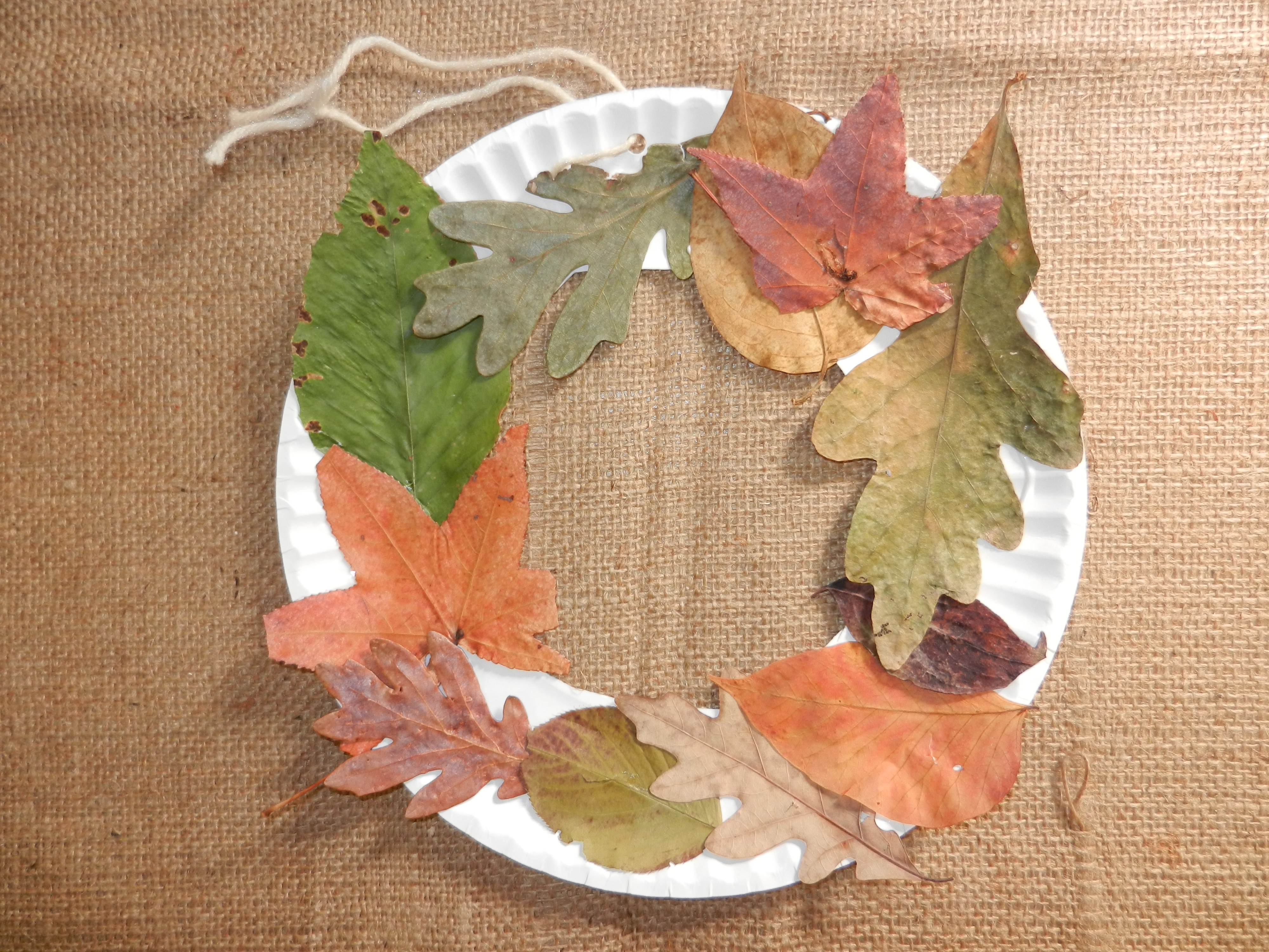 12 autumn seasonal discovery nature crafts nature into for Leaf crafts for adults