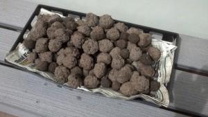 Seed Balls Drying