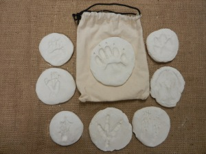 Clay Animal Tracks