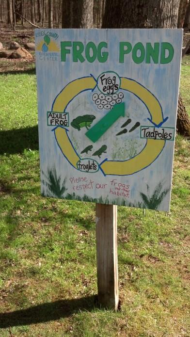 Frog Pond Metamorphosis Spinner Sign
