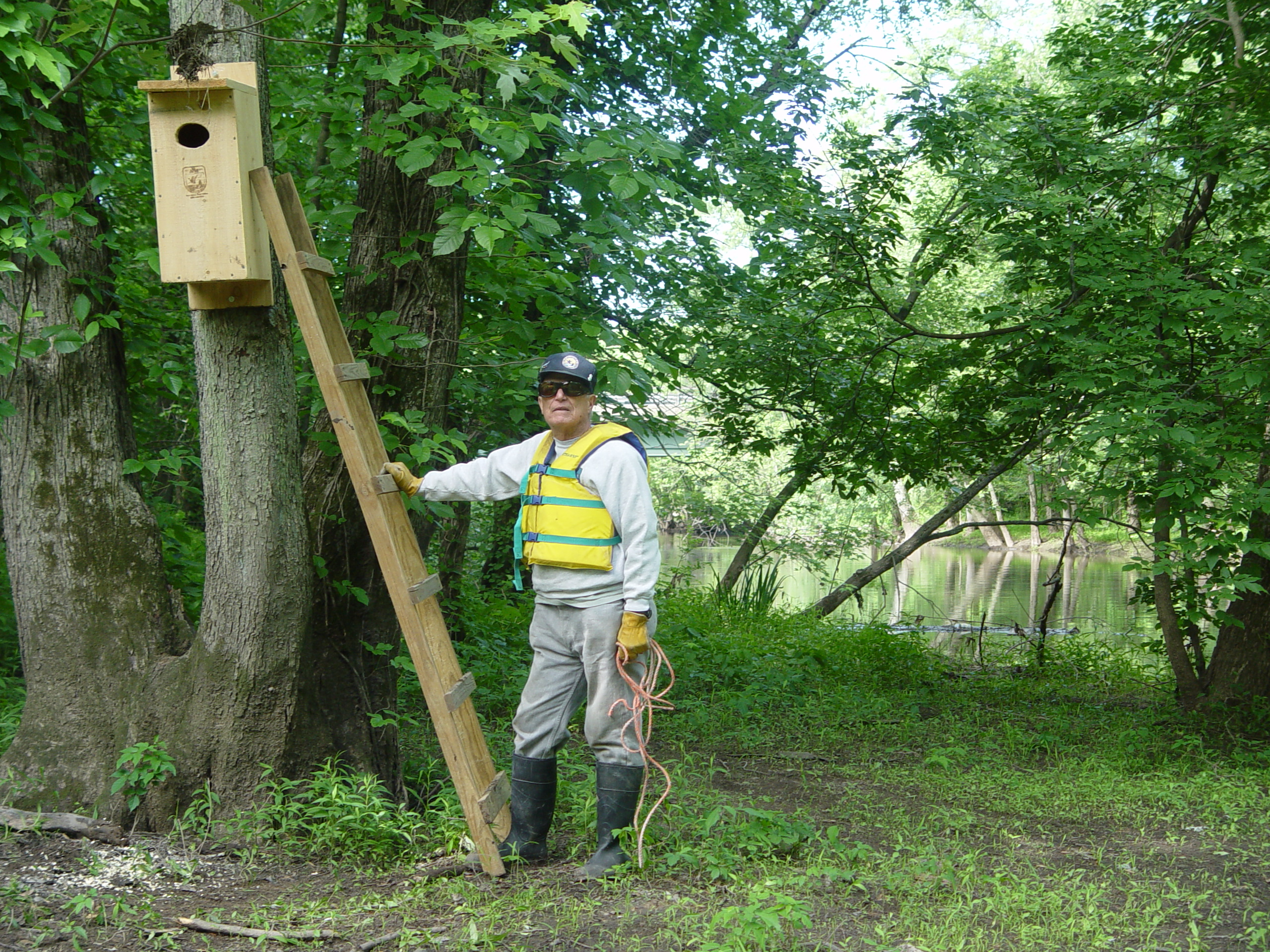 Citizen science wood duck boxes nature into action putting up a woodduck box along the passaic river publicscrutiny Choice Image