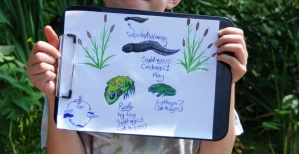 Frog Pond Habitat, Nature Journal, Hop Into Action