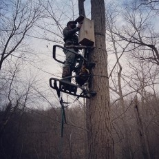 Mounting box with tree climber