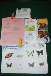 Butterfly Tent Safari Information Handouts