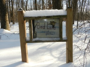 Bird Lake Trail Sign