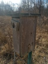 Bluebird House Eagle Project