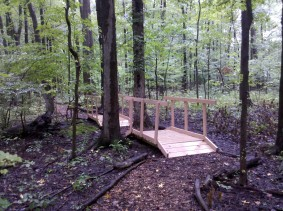New Bridge on Wetland Trail
