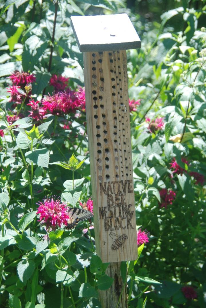 Buzz Into Action, Pollinator Boxes