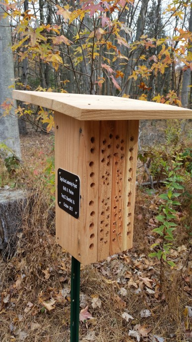 Kirill Pavlov Eagle Project, Pollinator Boxes (2)