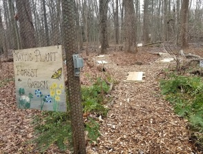Woodland Native Plant Enclosure Trail
