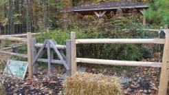 Split Rail Fence Around Butterfly Garden