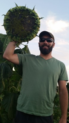 David with Large Sunflower ready for Harvest