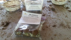 Buzzfest Seed Balls