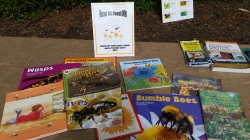 Bee Reading Zone