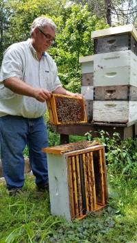 Jan Zientek - Essex County Agricultural Agent & Expert Beekeeper
