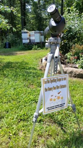 Scope on Honey Bee Hives