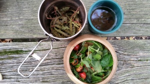 Wild Foraged Autumn Salad (3)
