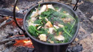 Wild Foraged Autumn Soup (4)