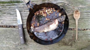 Wild Foraged Trout, Hen of the Woods, Chives Meal with Sumac Seed Spice (5)