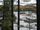 view near long pond