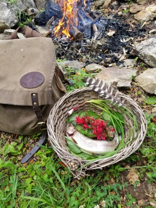 Trout and Foraged Wild Edibles, David Alexander Got to make things look nice for IG. @natureintoaction