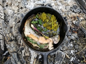 When the eyeballs turn white and pop that is my indicator that the trout is cooked. With milkweed, monarda, nettle and nodding onions.