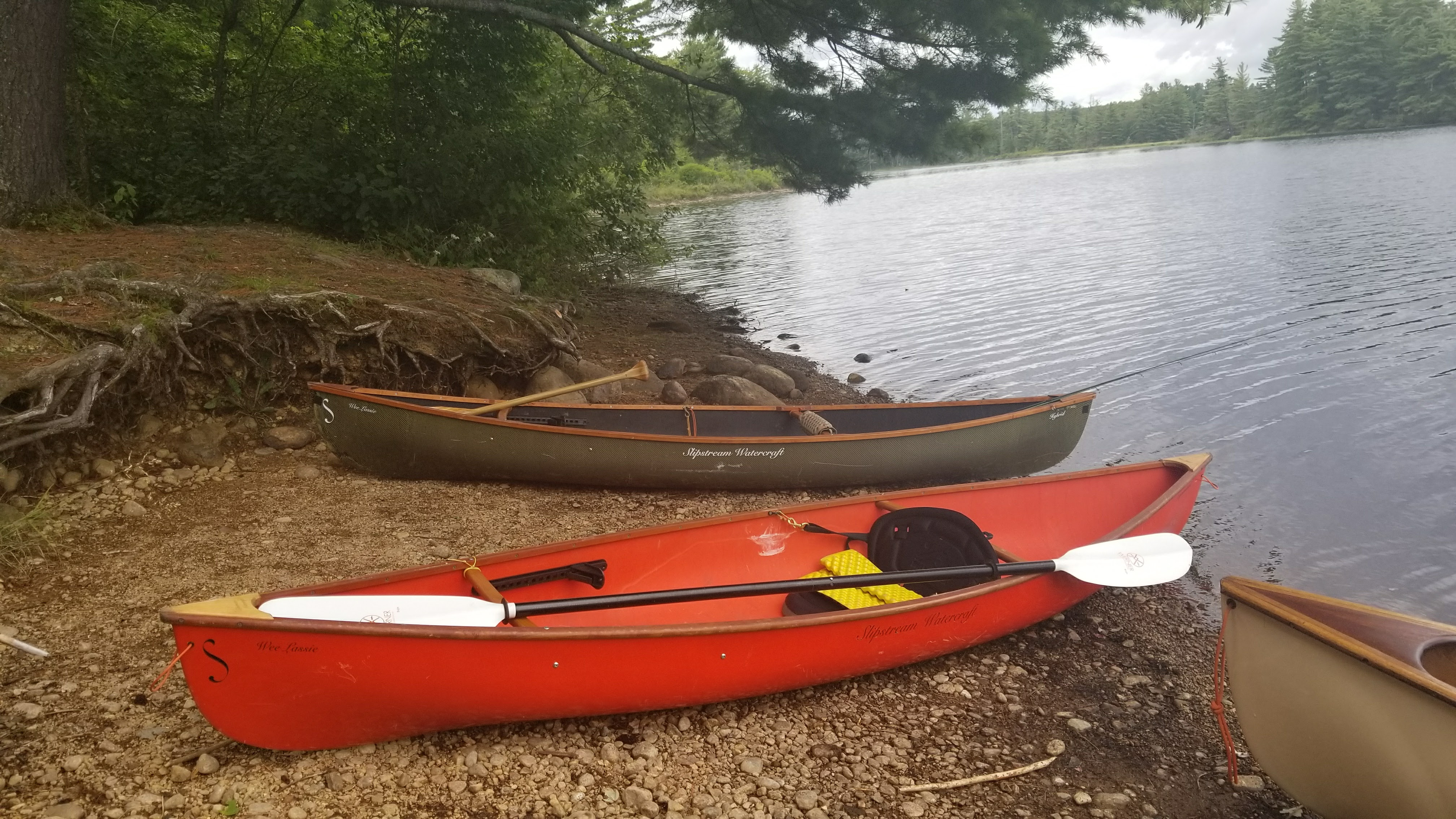 once beyond the upper dam the curves cease and the paddle begins in earnest 13  miles to the end of the flow beyond the floating bog at lows lake or for us     bog river flow to oswagatchie traverse  u2013 adirondack canoe hammock      rh   natureintoaction