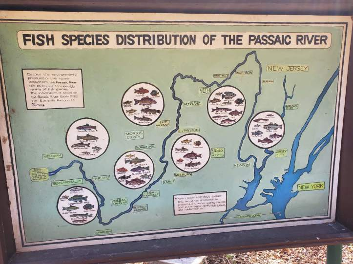 fish of the passaic river sign
