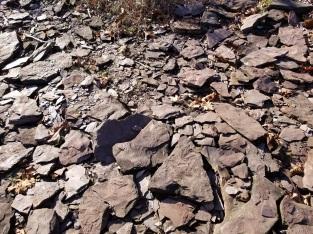 Mud stone