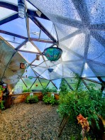 Geodesic Growing Dome (1)
